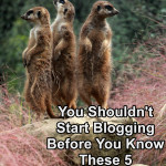 You Shouldn't Start Blogging Before You Know These 5 Blogging Cons